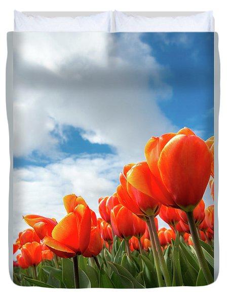Dutch Tulips Near Keukenhof Duvet Cover