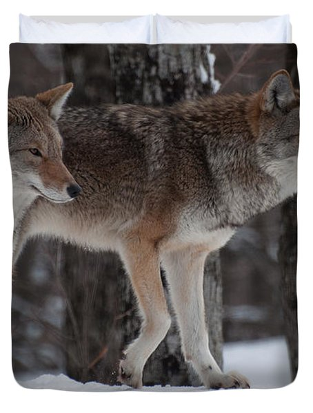 Duvet Cover featuring the photograph Dynamic Duo by Bianca Nadeau