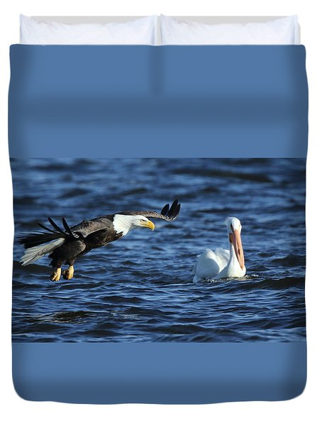 Eagle And Pelican Duvet Cover by Coby Cooper