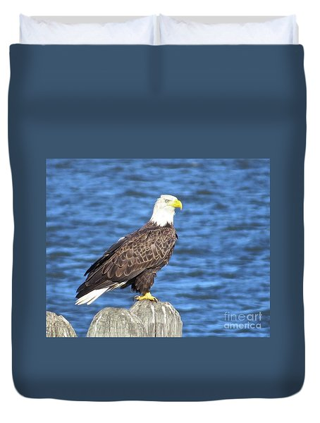 Eagle At East Point  Duvet Cover by Nancy Patterson