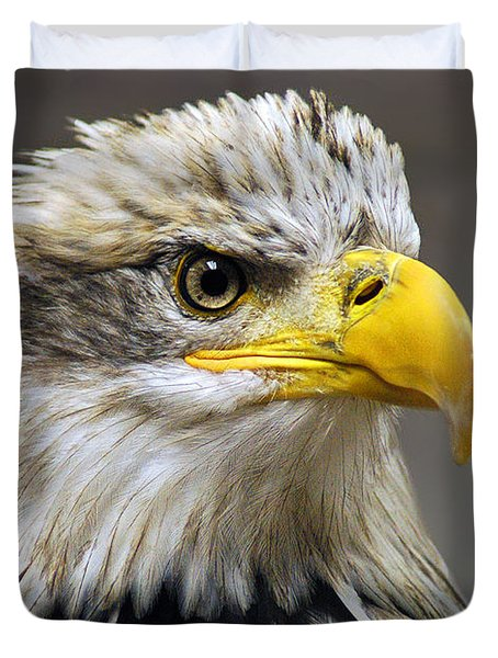 Eagle Duvet Cover by Harry Spitz