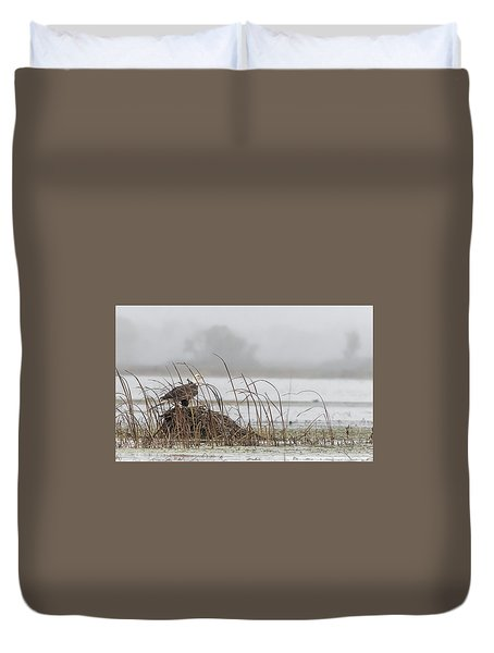 Eagle Hunts For Coots And Ducks Duvet Cover