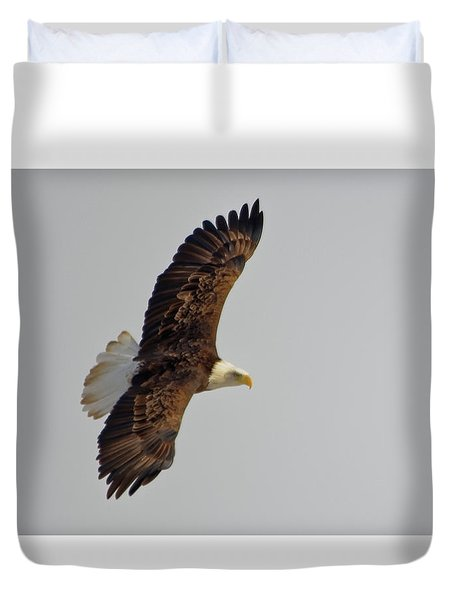 Eagle In Flight Duvet Cover
