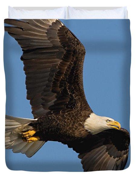 Eagle In Sunlight Duvet Cover