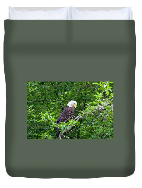 Eagle In The Tree Duvet Cover