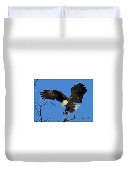 Eagle Landing Duvet Cover by Coby Cooper