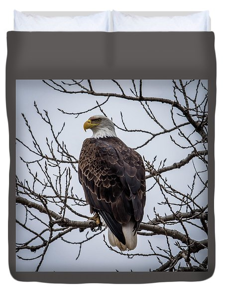 Duvet Cover featuring the photograph Eagle Perched by Paul Freidlund