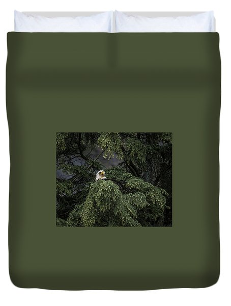 Eagle Tree Duvet Cover by Timothy Latta