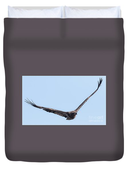 Eagle Watch 2017 Duvet Cover by Ricky L Jones
