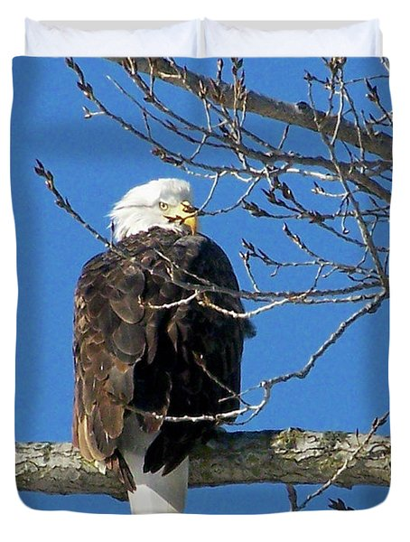 Eagle Watch Duvet Cover by Sue Stefanowicz