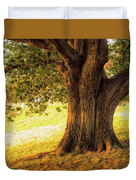 Early Autumn Oak Duvet Cover