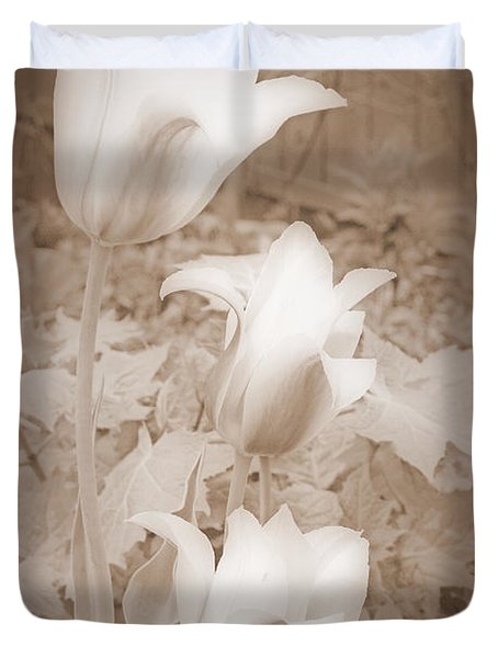 Early Blooming Tulips In Sepia Duvet Cover