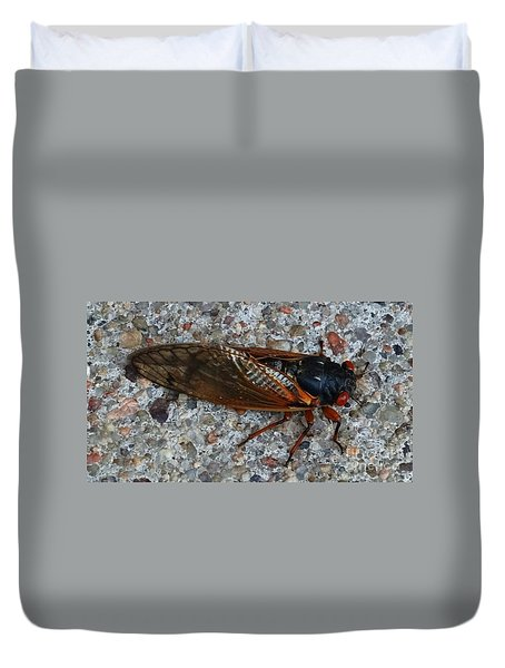 Duvet Cover featuring the photograph Early Cicada  by J L Zarek