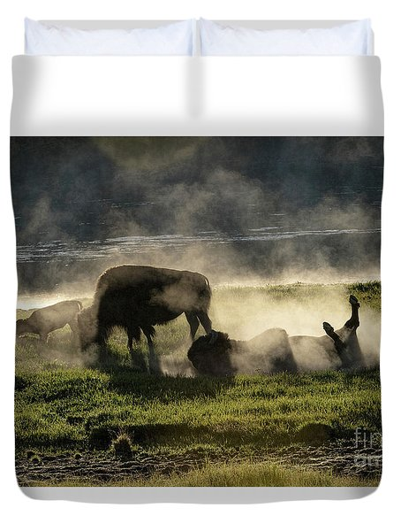 Early Light Duvet Cover