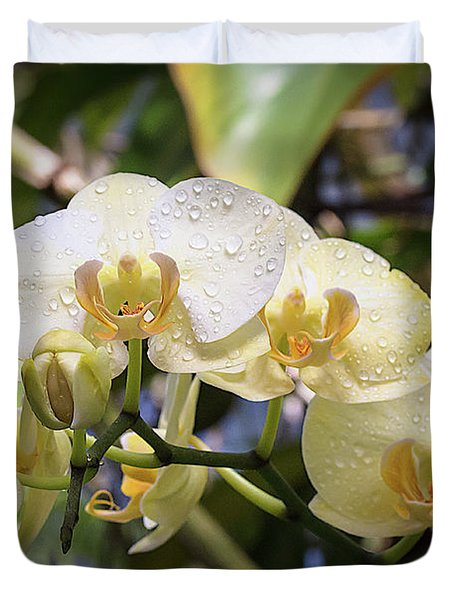 Early Morning Orchids Duvet Cover
