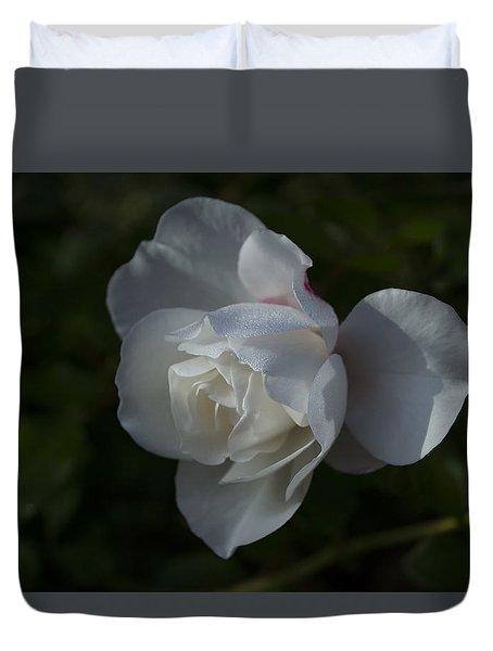 Early Morning Rose Duvet Cover by Dan Hefle