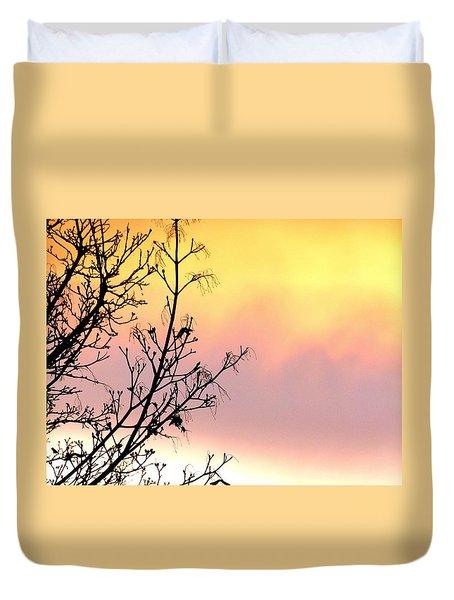 Early Spring Sunset Duvet Cover by Will Borden