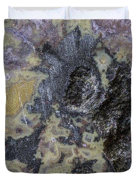 Earth Portrait 001-168 Duvet Cover