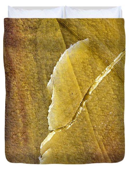 Earth Portrait 001-66 Duvet Cover