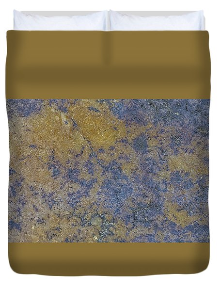 Earth Portrait L 2 Duvet Cover