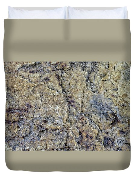 Earth Portrait L1 Duvet Cover