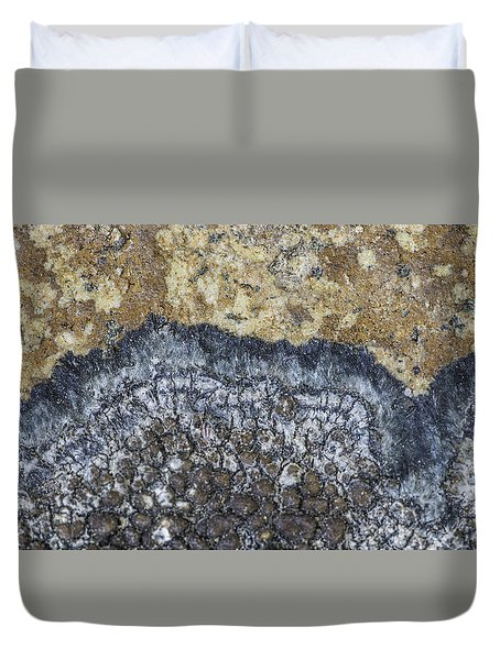 Earth Portrait L9 Duvet Cover