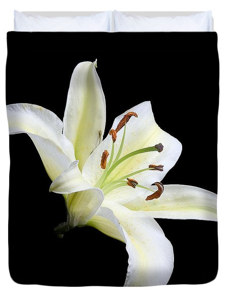 Easter Lily 1 Duvet Cover