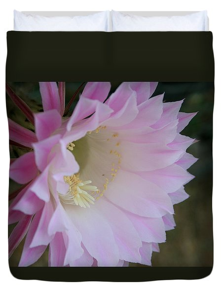 Easter Lily Cactus East Duvet Cover