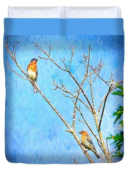 Eastern Bluebird Couple Duvet Cover