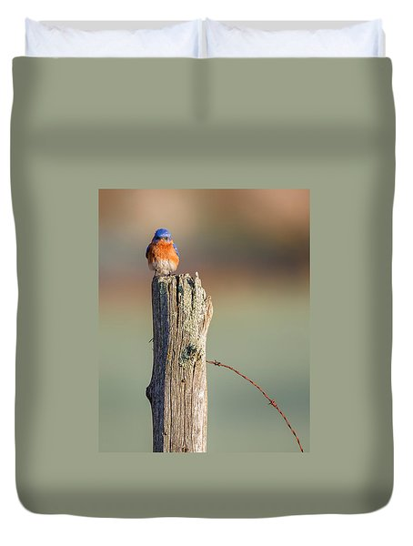 Duvet Cover featuring the photograph Eastern Bluebird Portrait by Bill Wakeley