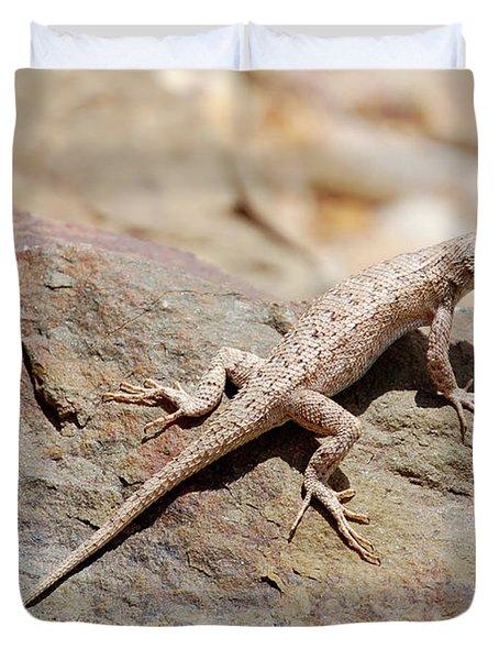 Eastern Fence Lizard, Sceloporus Undulatus Duvet Cover