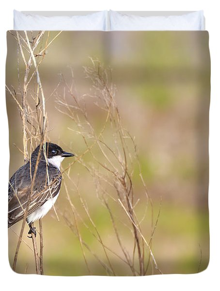 Eastern Kingbird On A Perch Duvet Cover