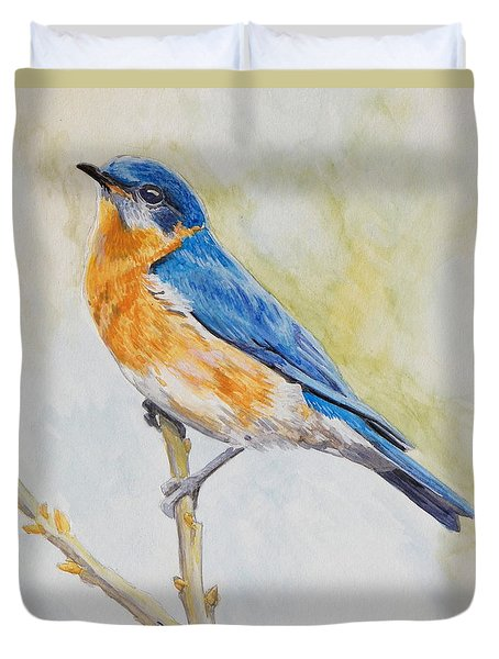 Eastern Mountain Bluebird Duvet Cover