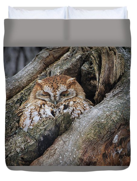 Eastern Screech Owl 2 Duvet Cover by Gary Hall