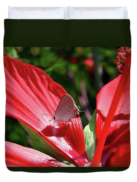 Eastern Tailed Blue Butterfly On Red Flower Duvet Cover