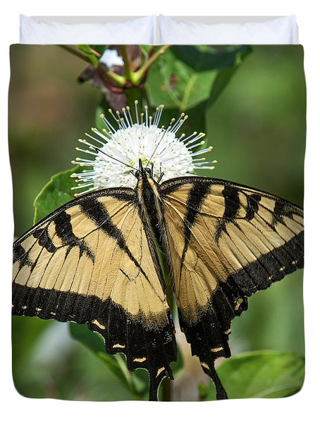 Eastern Tiger Swallowtail Din0254 Duvet Cover
