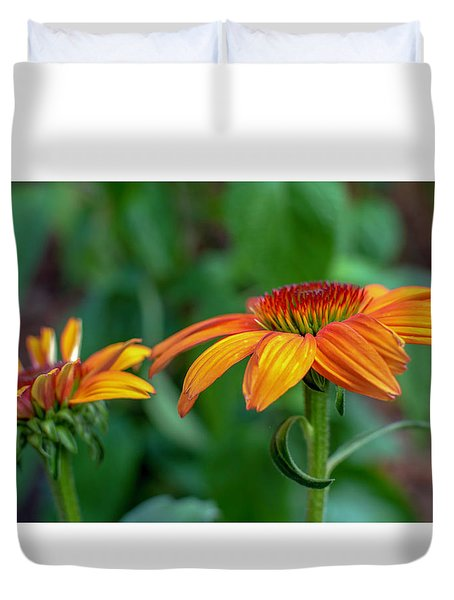 Echinacea Side View Duvet Cover