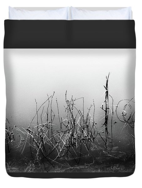 Echoes Of Reeds 3 Duvet Cover