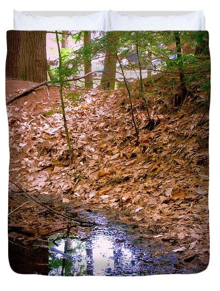Edge Of The Swamp Duvet Cover by Susan Lafleur