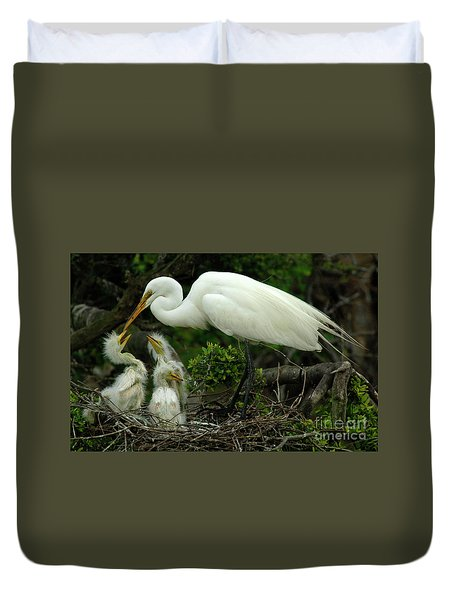 Majestic Great White Egret Family Duvet Cover by Bob Christopher