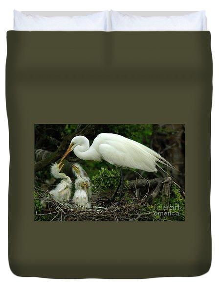 Majestic Great White Egret Family Duvet Cover by Bob Christopher