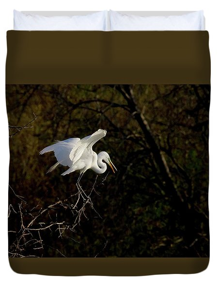 Duvet Cover featuring the photograph Egret by Kelly Marquardt