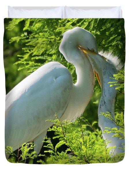 Egrets At Feeding Time Duvet Cover
