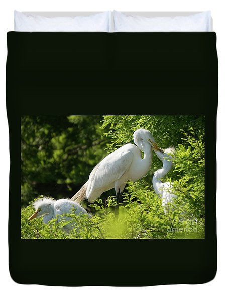 Egrets With Their Young Duvet Cover