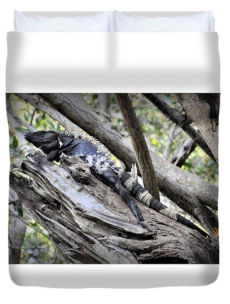 El Garrobo Duvet Cover by Jim Walls PhotoArtist