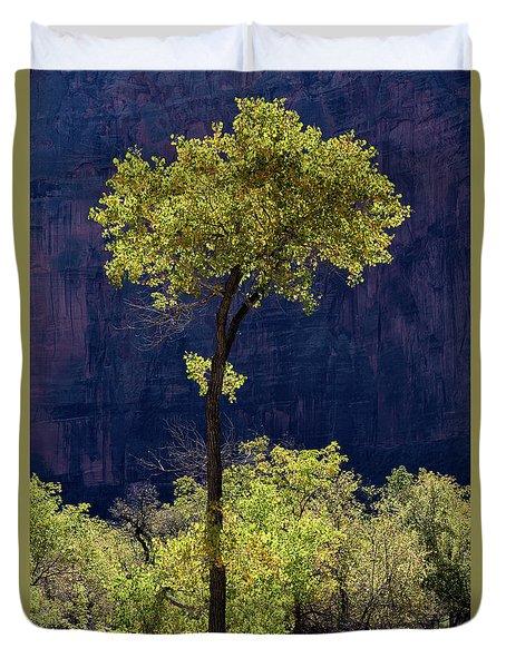 Elegance In The Park Utah Adventure Landscape Photography By Kaylyn Franks Duvet Cover
