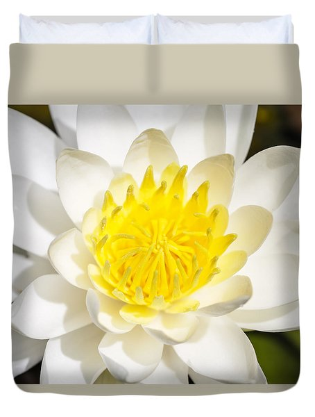 Elegant Lotus Duvet Cover