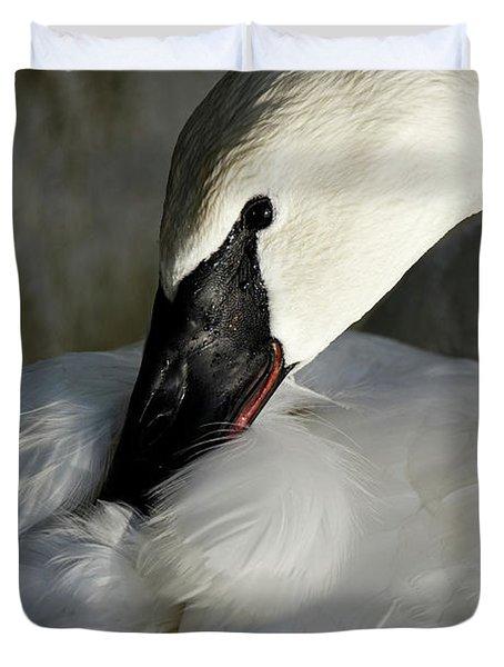 Elegant Trumpeter Swan Duvet Cover