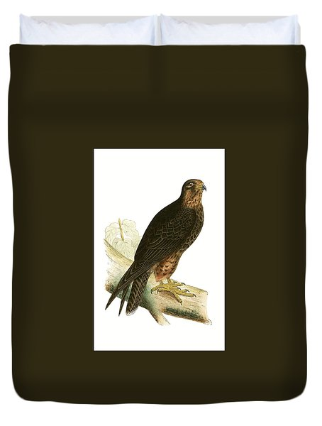 Eleonora Falcon Duvet Cover by English School