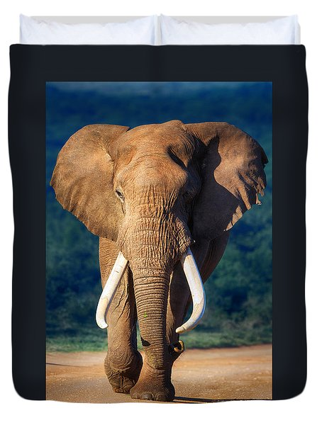 Elephant Approaching Duvet Cover